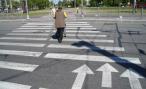 Пешеходы предложили ГИБДД оборудовать переходы шлагбаумами и видеорегистраторами