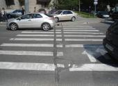 «Зебра преткновения». Все виды нарушений на пешеходном переходе