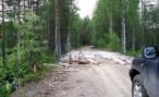 На ремонт дорог после наводнения в ДФО выделили миллиард рублей