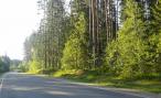 Медведев запретил разжигать костры у дороги и выбрасывать окурки из окон