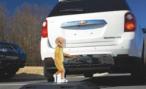 Эксперты из США признали очевидное: камеры заднего вида эффективнее датчиков парковки
