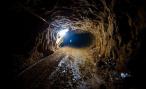 В России построят тоннель для животных