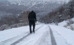 Через 10 лет дороги в России будут быстрыми и платными