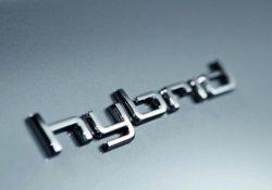 Шильда Hybrid