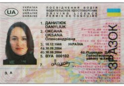 Украинское водительское удостоверение