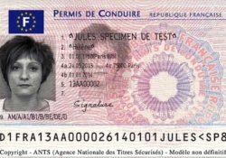 Водительское удостоверение (ЕС)