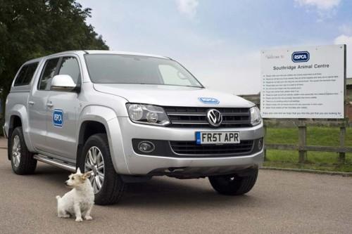 Собака за рулем (программа RSPCA, Англия)