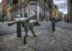 Писающая собака, Брюссель