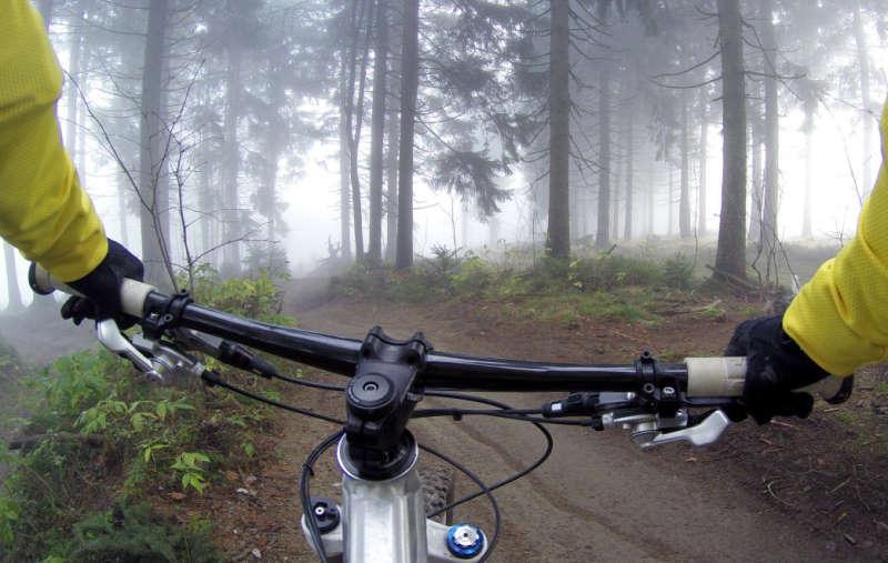 Велосипедист в лесу