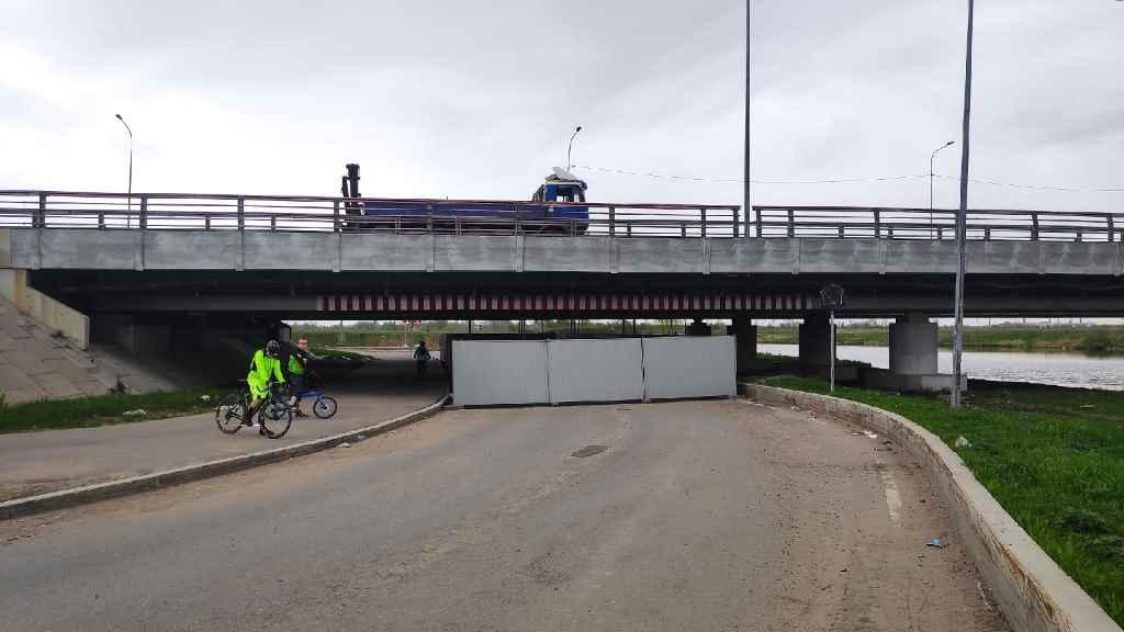 Мост глупости в Санкт-Петербурге