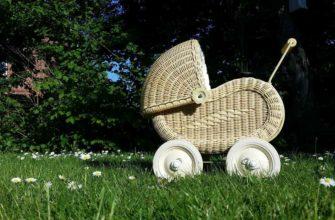 Детская коляска на газоне